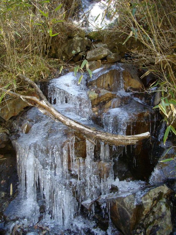 凍りついた水