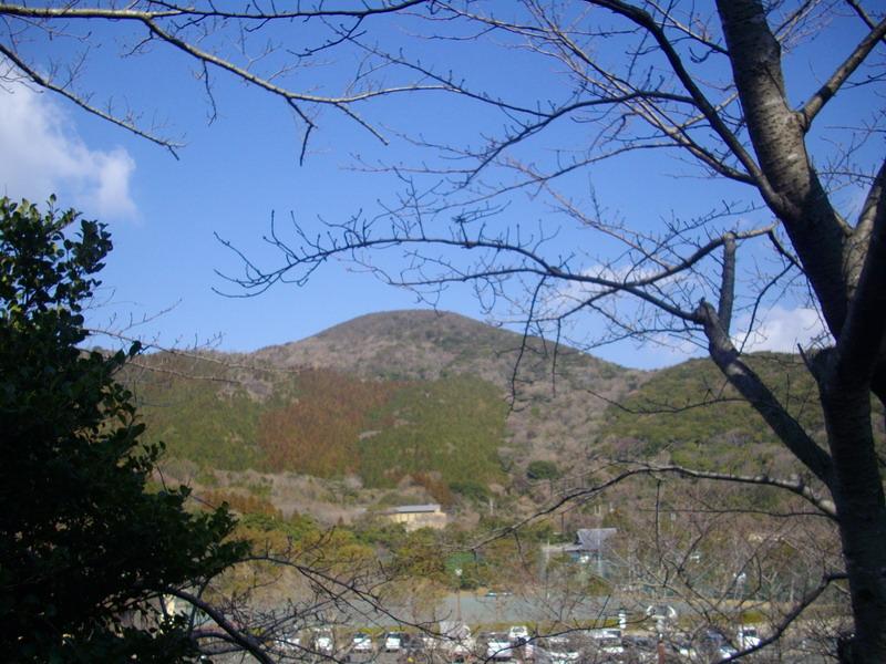 衣笠山を仰ぎ見る