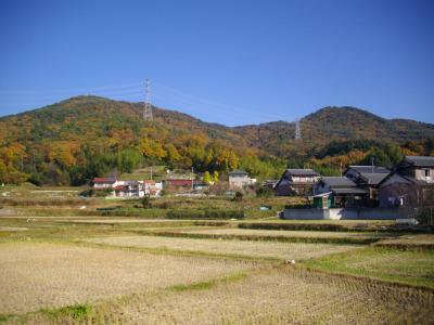 道樹山と大谷山かな?