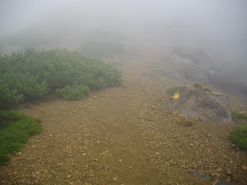霧に覆われた阿寒