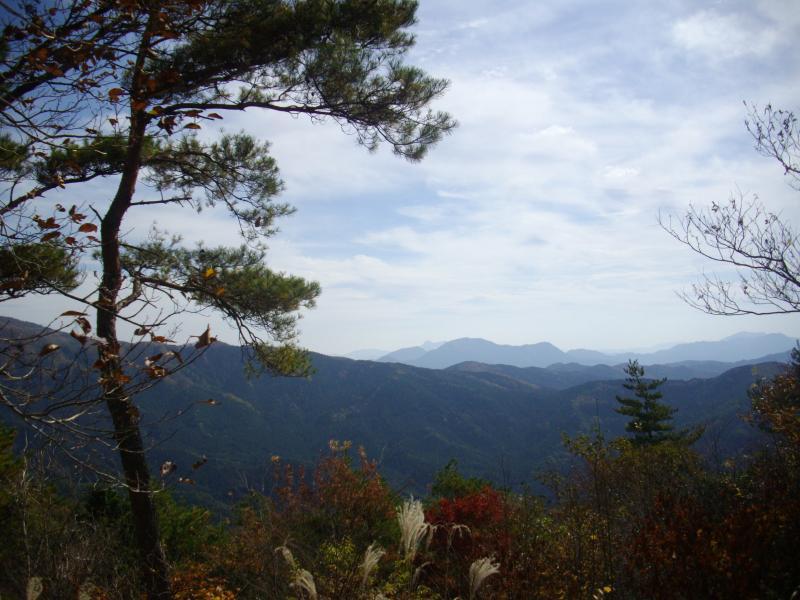 岩伏山から