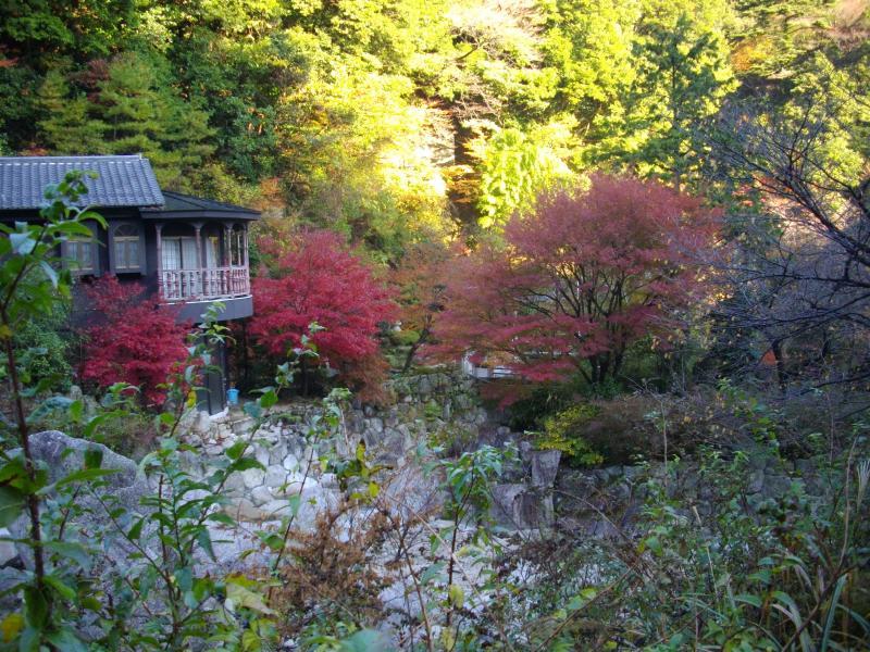 湯ノ山の紅葉