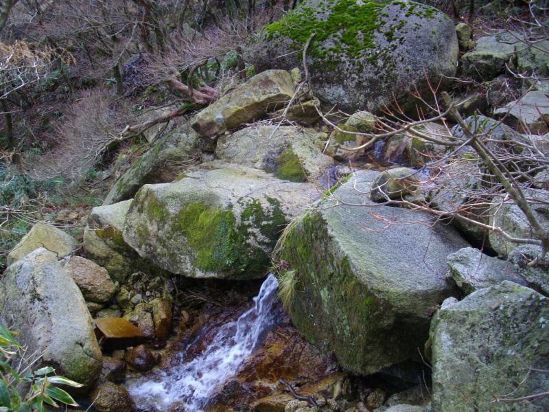 花崗岩気質の沢