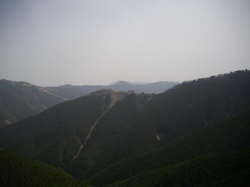 護摩壇山周りは林道一杯