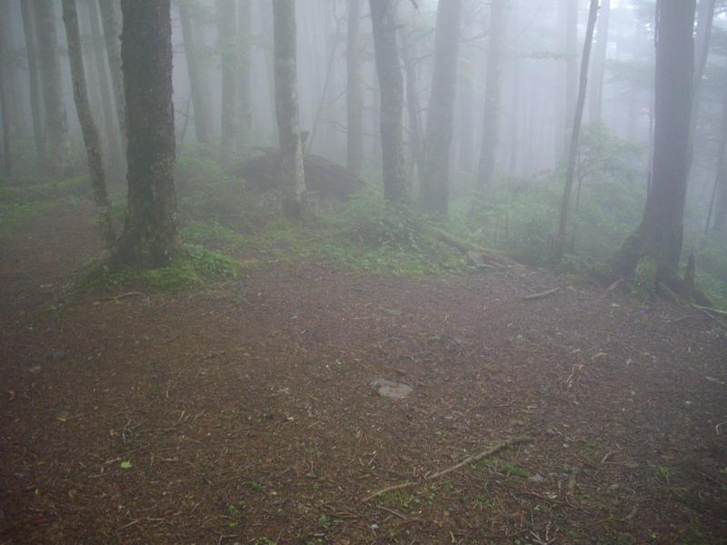 小無限山のテン場