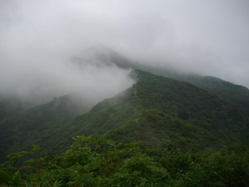 雲上の粟ヶ岳