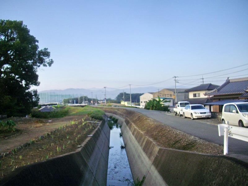 IMGP3619.jpg