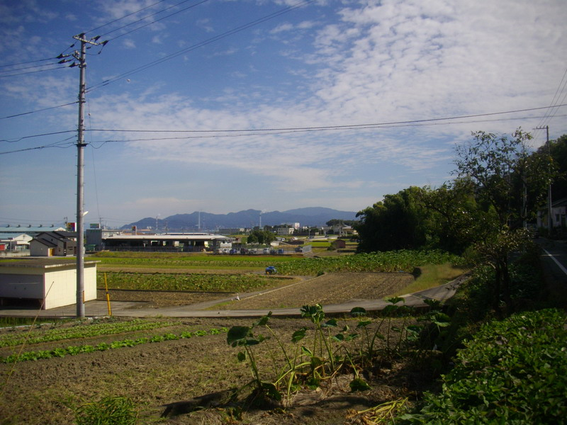 IMGP3961.jpg